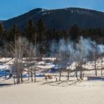 montana property for sale cottonwood retreat