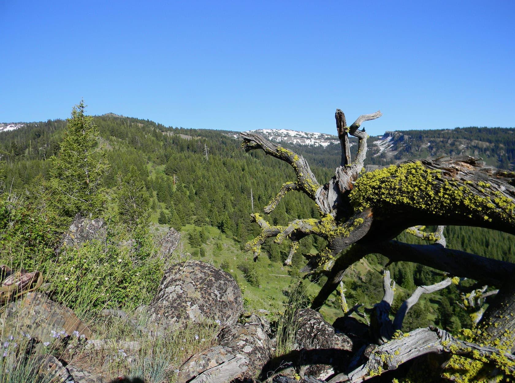 high mountain exploration idaho dempsey flat hunting property