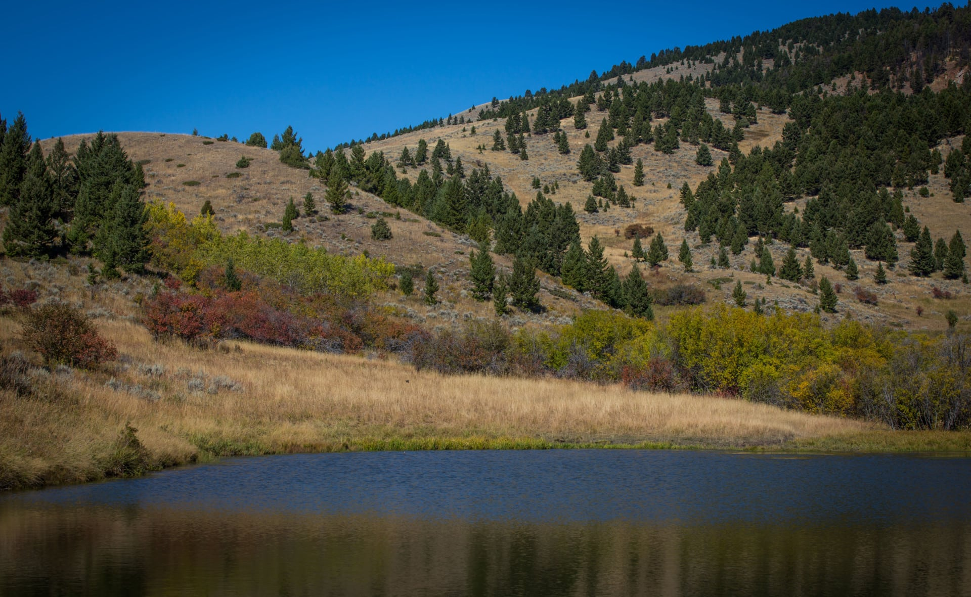 land only property for sale montana aspen canyon ranch