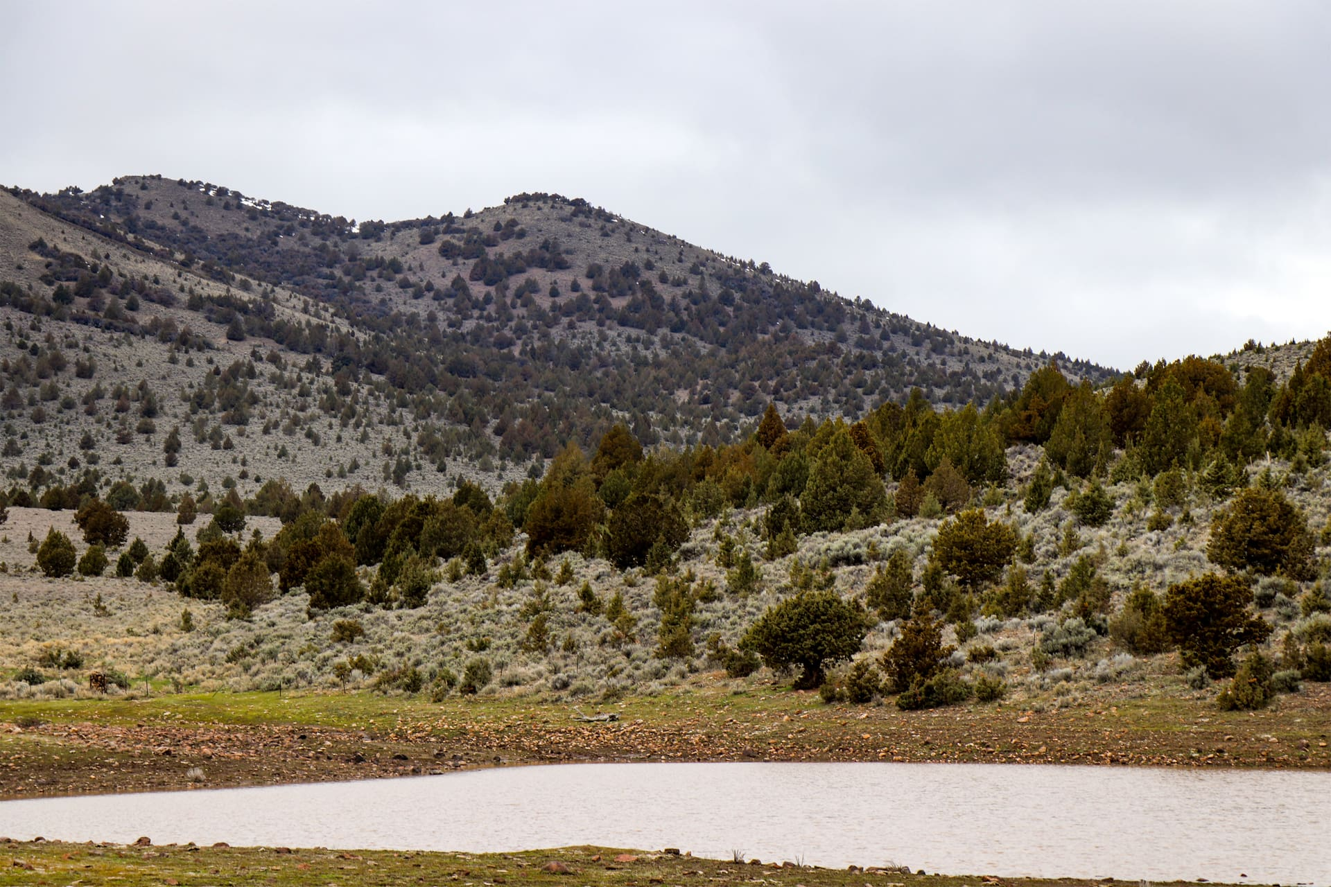 big game hunting land for sale montana glass butte ranch