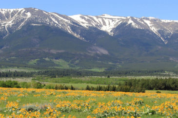cover elk creek ranch montana property for sale land