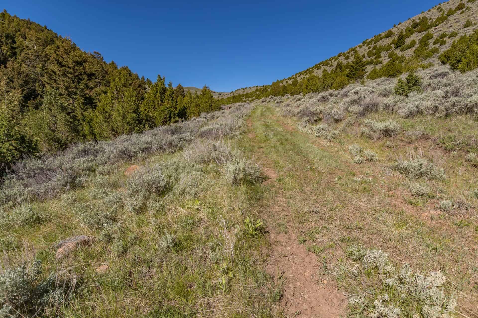 hay land montana v timber creek ranch