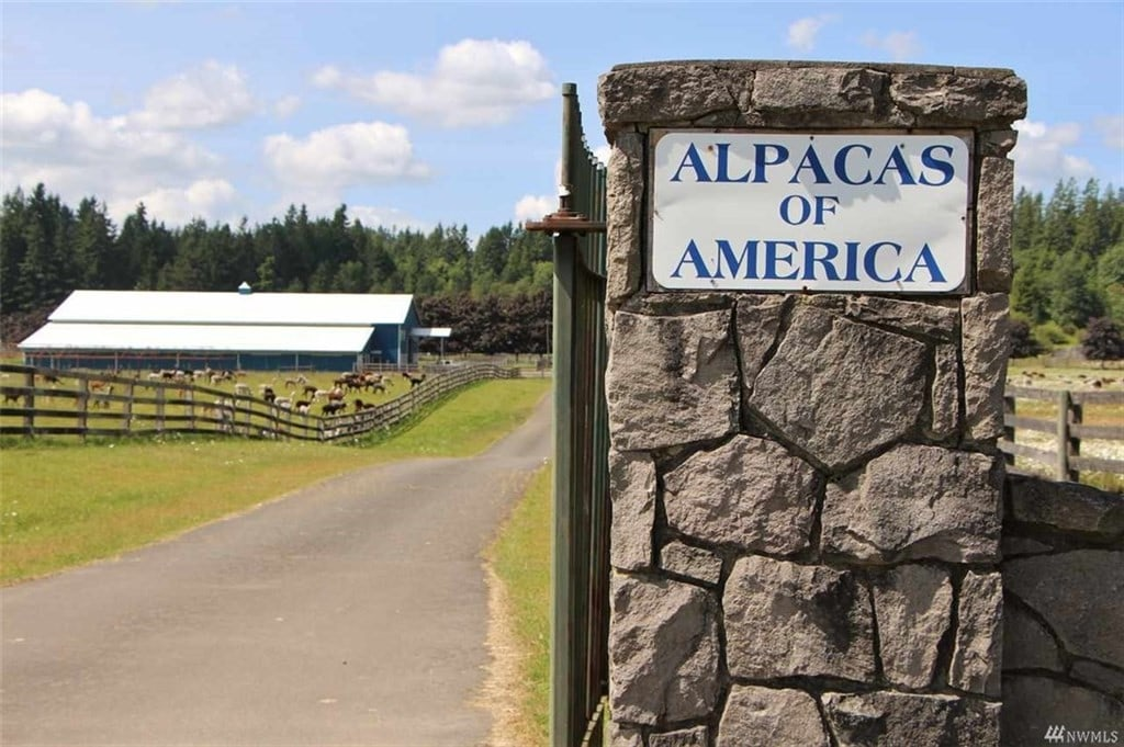 Tenino Alpaca Ranch Washington Gated Entry