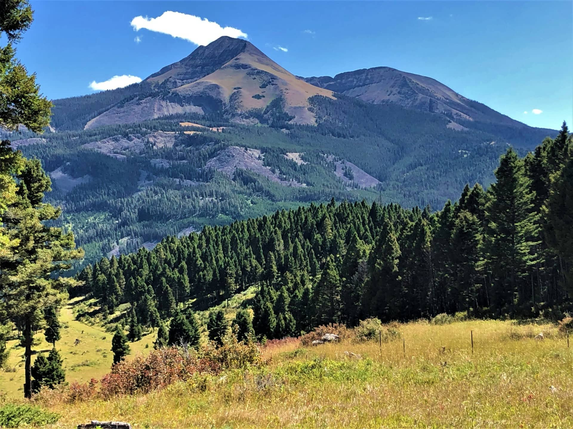 ranches land for sale montana dancing bear ranch