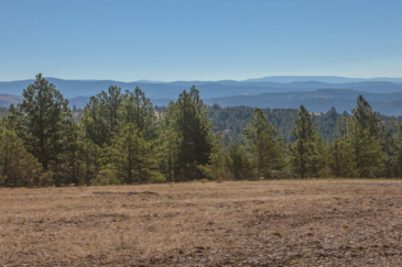 oregon timber property for sale foley butte ranch