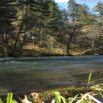 Washington River Property for Sale Husum River Camp