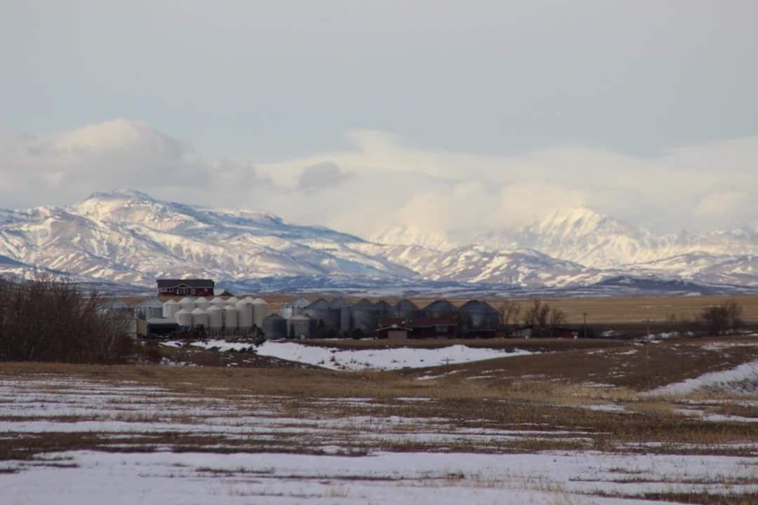 Farm Headquarters Montana Lake Francis Irrigated Farm