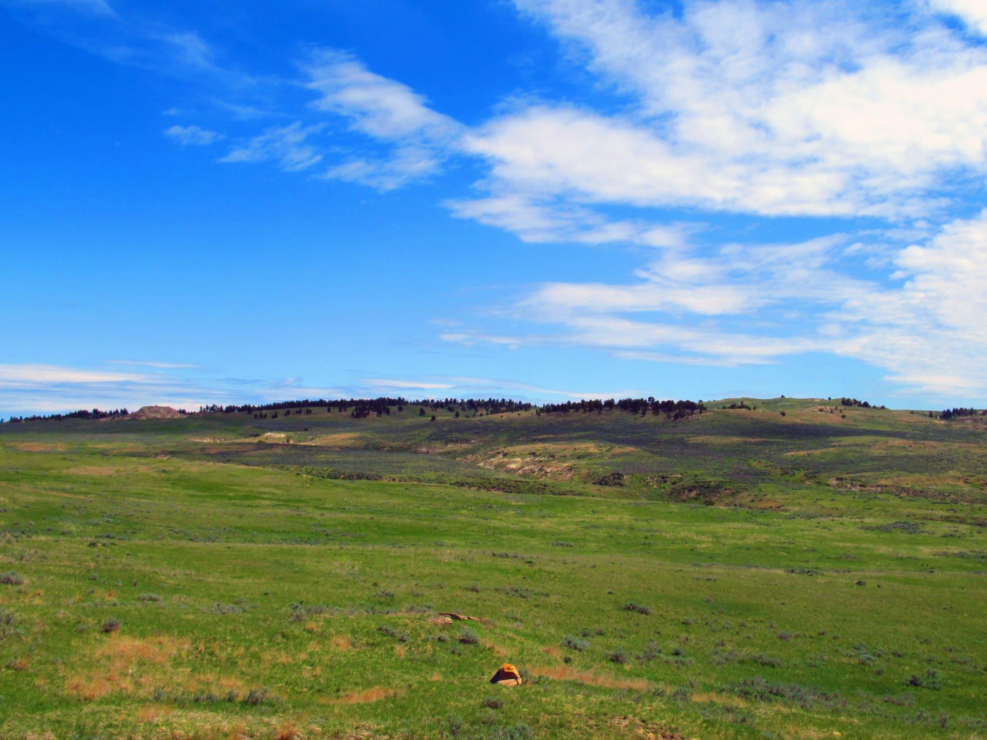 west end montana little rosie ranch