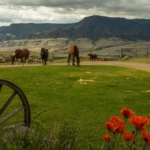 wyoming-ranch-for-sale-star-hill-ranch-cody