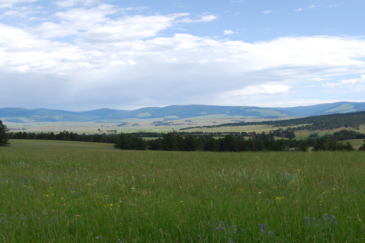 montana cattle ranch for sale montana little valley ranch