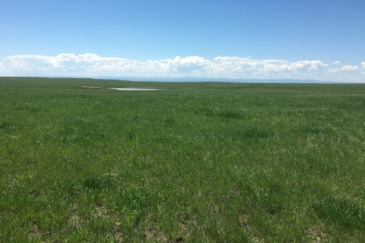 equestrian property for sale south dakota northern plains grassland cattle ranch