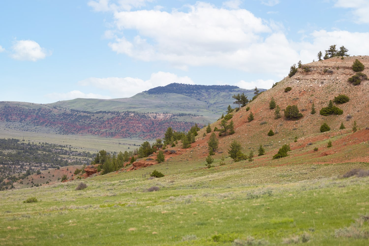 hill country montana pryor mountains outlaw ranch