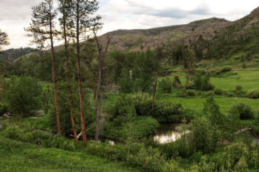 Recreational Hunting Property For Sale Montana