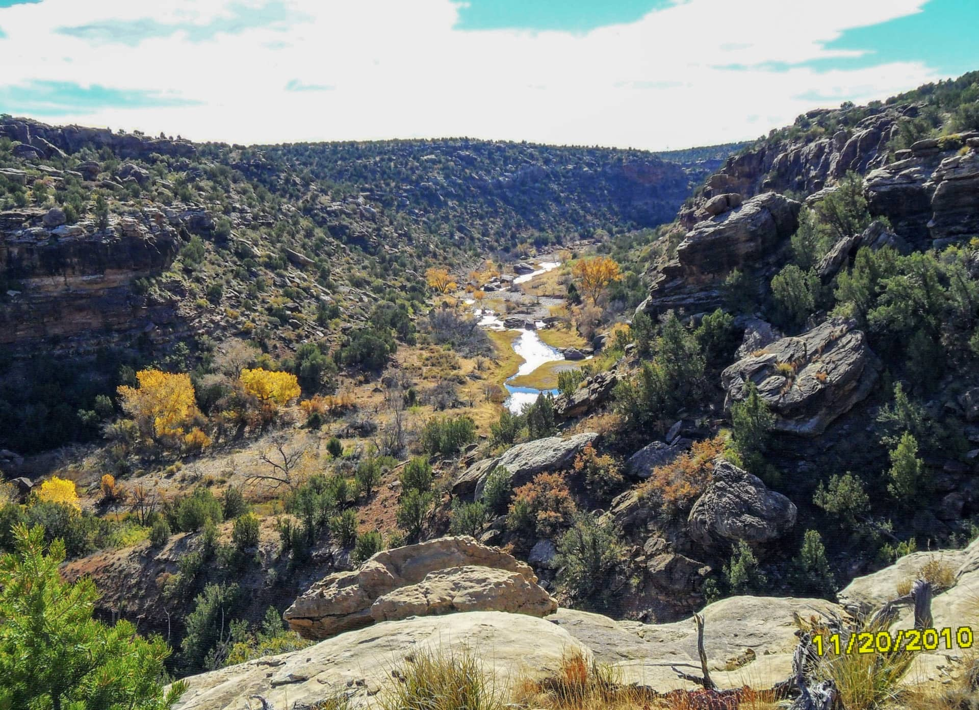 autumn view new mexico cottonwood springs north