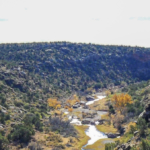 New Mexico ranch for sale Cottonwood Springs North