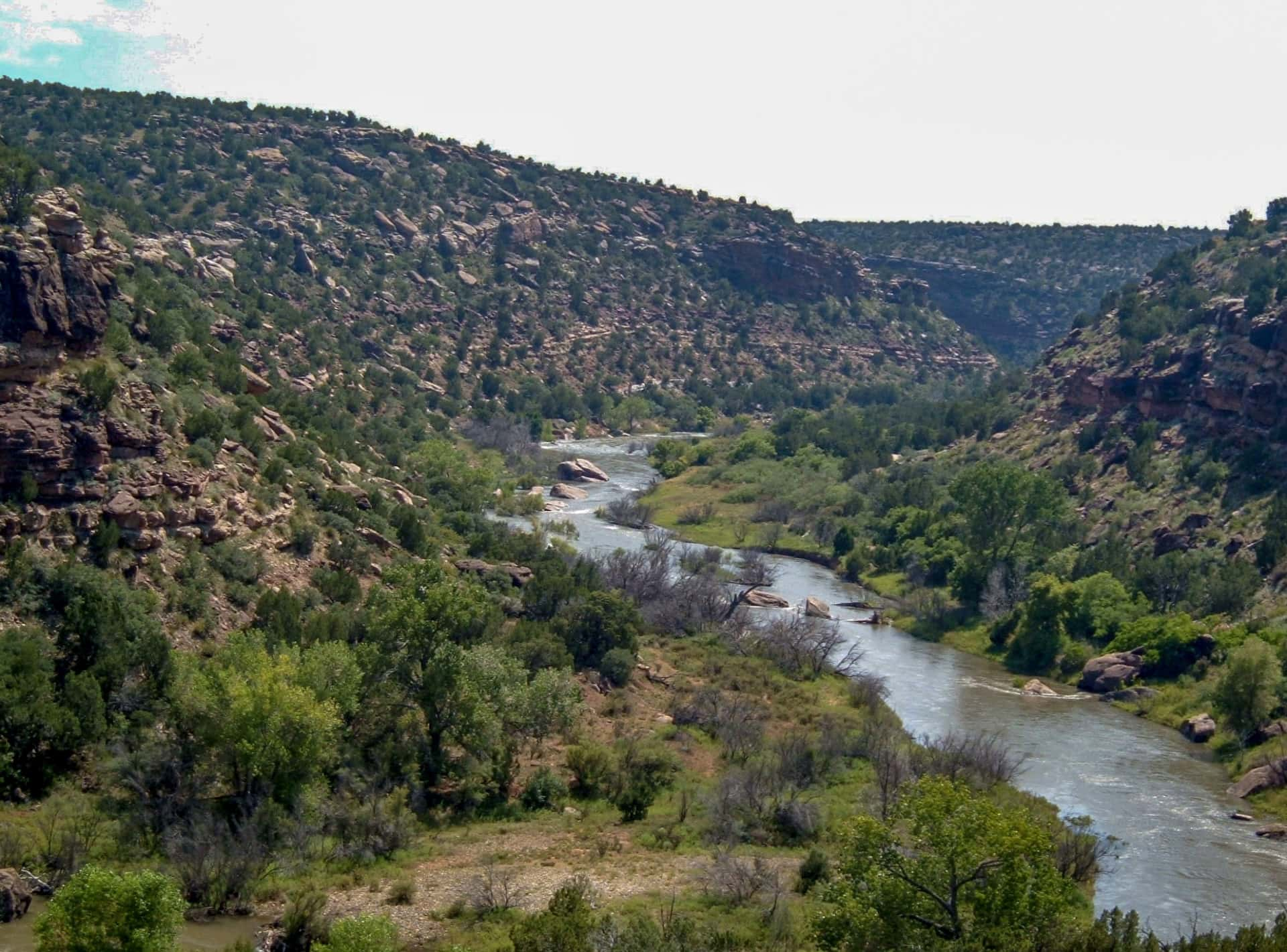 river and canyon new mexico cottonwood springs north