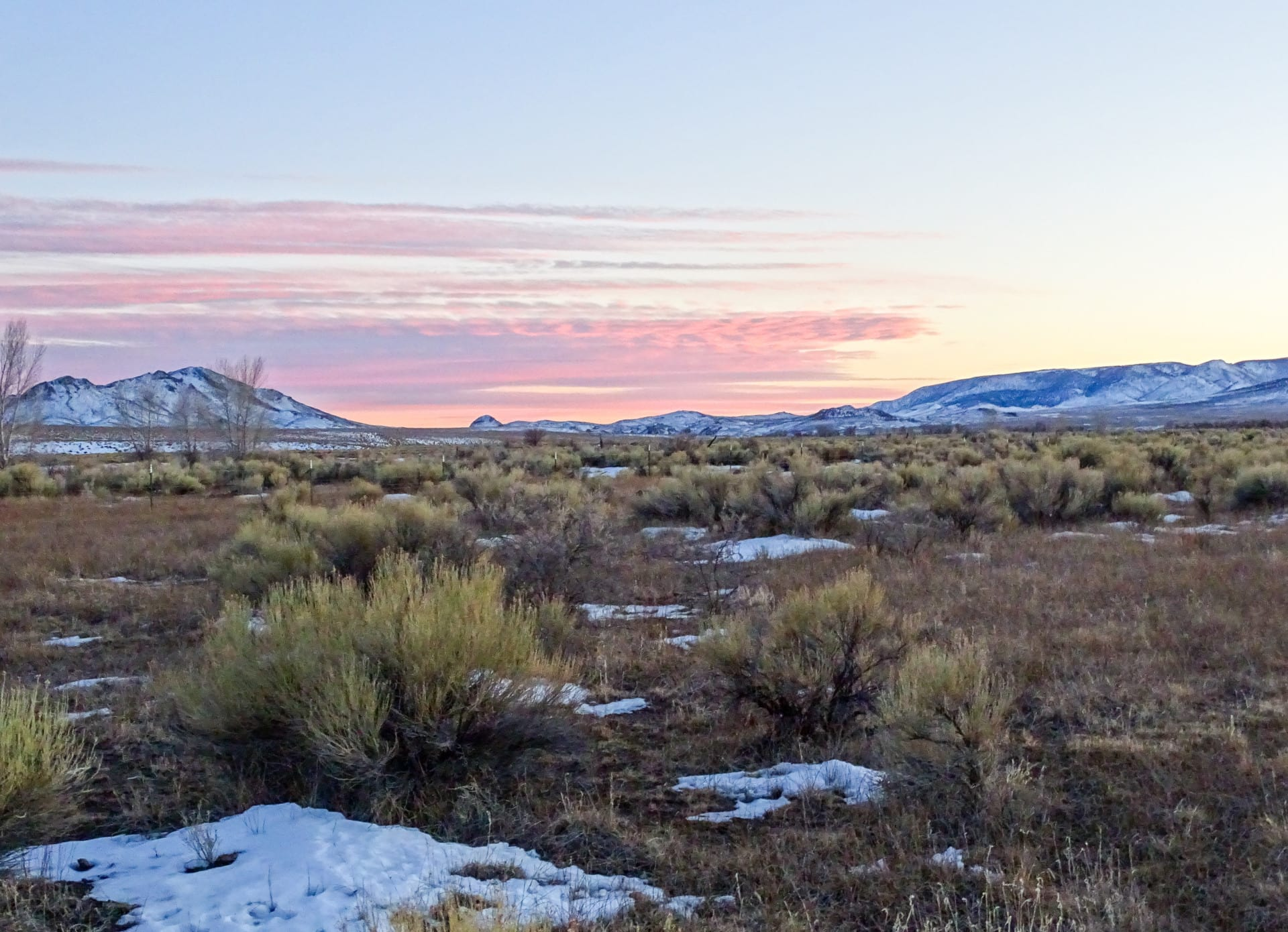 upland sage pink sunset colorado two rivers ranch