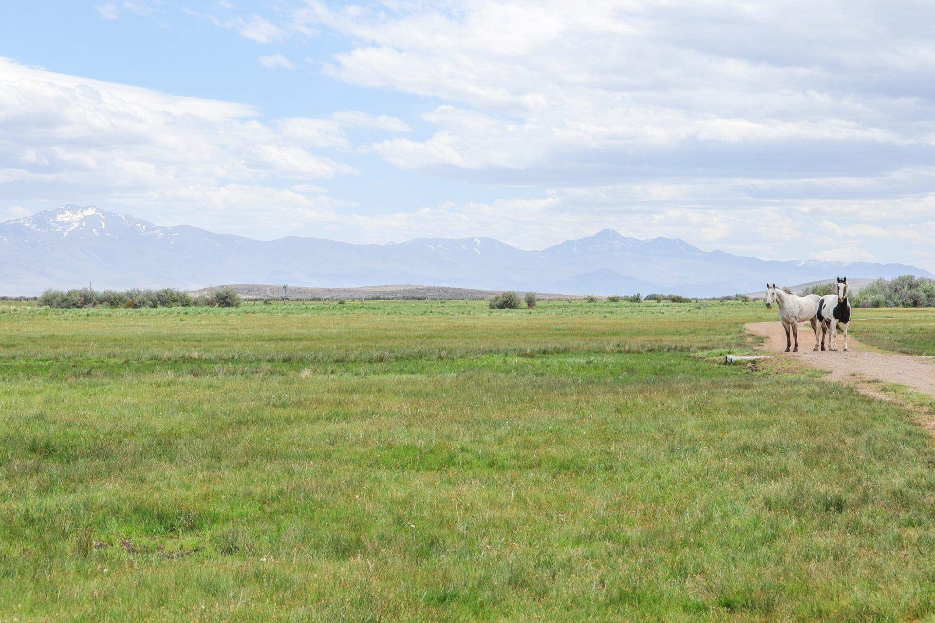 acre ranch nevada lucky 7 ranch