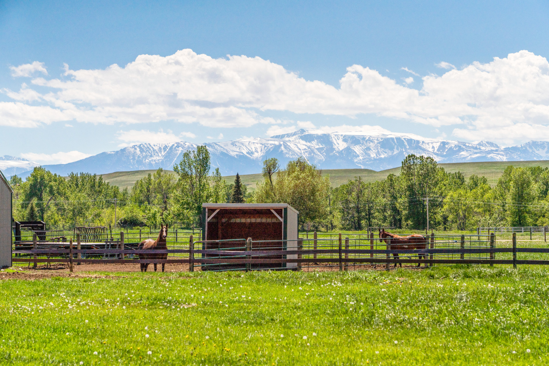 equestrian property for sale montana absarokee horse ranch