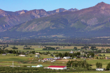 montana property for sale swanson apple orchard