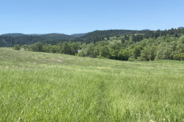 south dakota property for sale spearfish ranchette horse property
