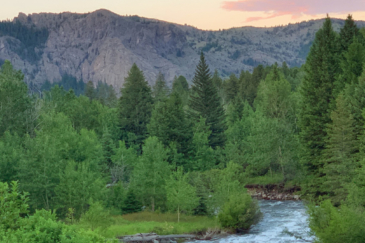 Beautiful Ranch For Sale Montana Sternad Ranch Cover