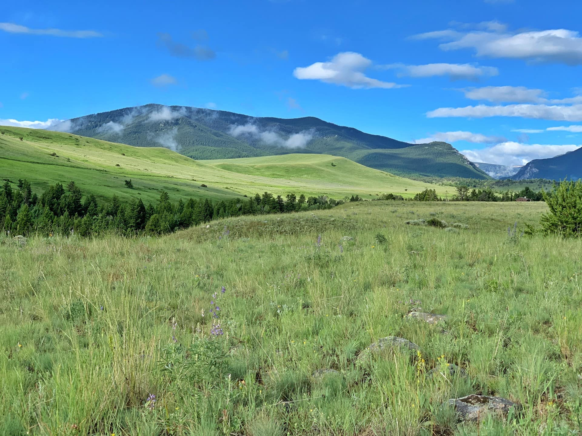 Hunting Ranch For Sale Montana Sternad Ranch
