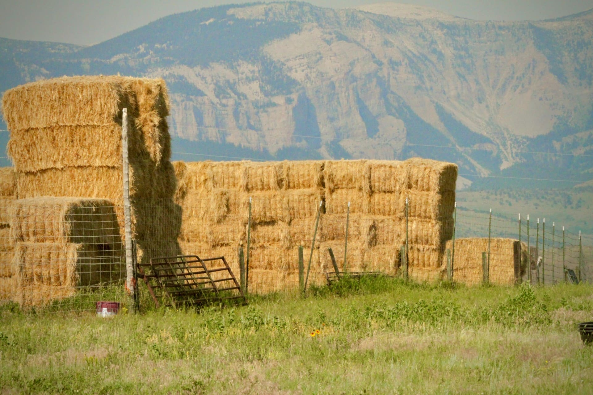 old haystack montana north fork willow creek ranch