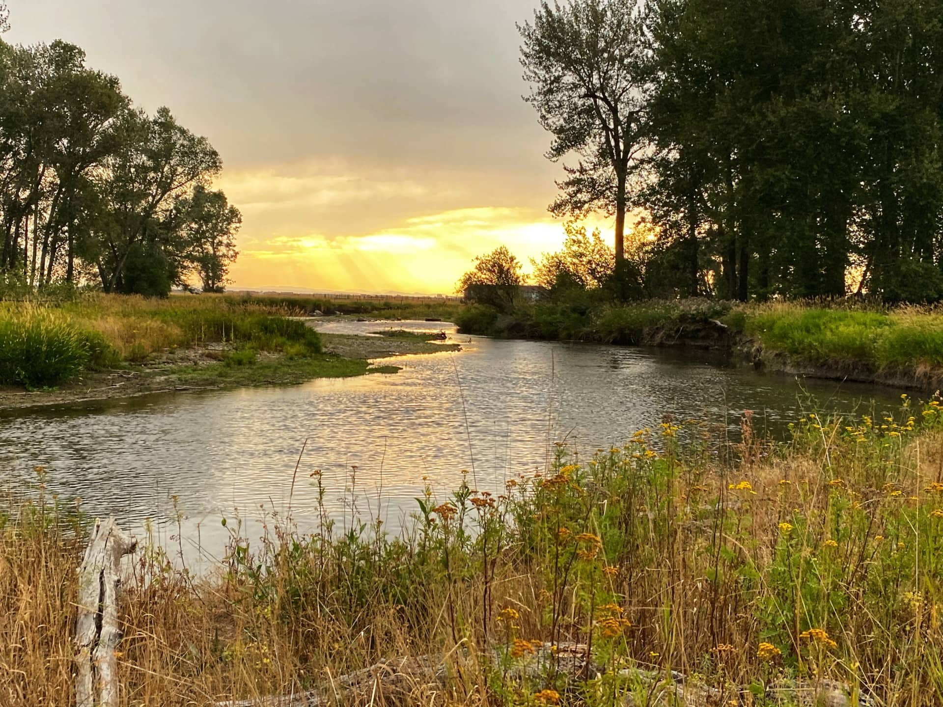Bozeman Real Estate East Gallatin River Frontage For Sale Southwest Montana