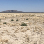 oregon property for sale a diamond in the desert