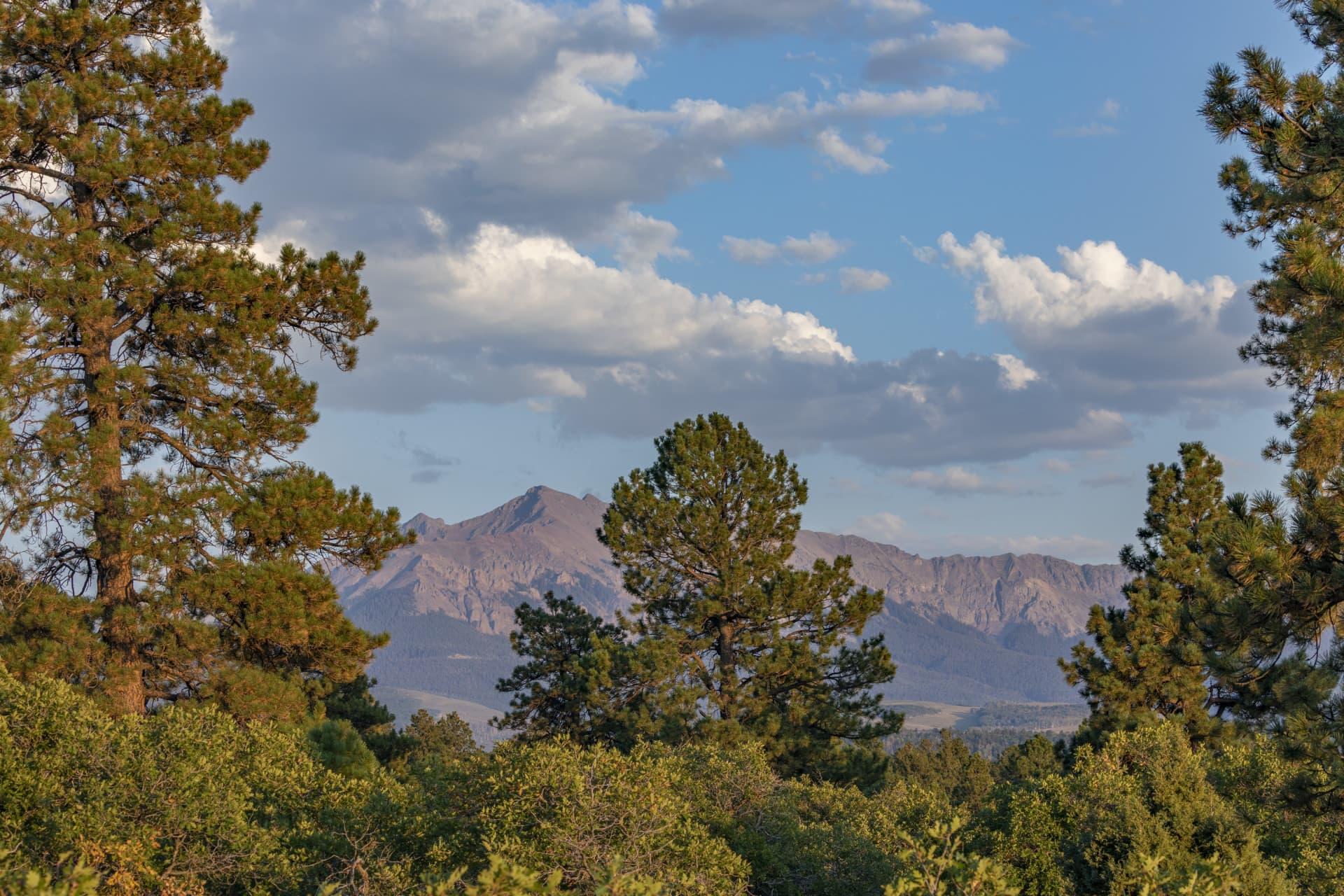 Hayden Peak Colorado Four Shooting Stars Ranch